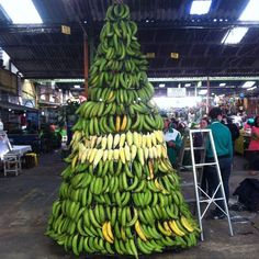 Christmas tree made of plantains in a #Panama #Market