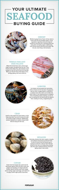 Your Ultimate Seafood Buying Guide