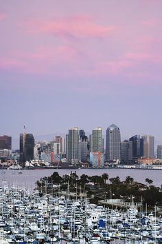 ✮ San Diego Skyline and Marina at Dusk