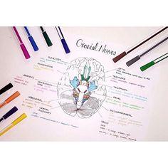 E=mc² La mente que se abre a una nueva idea, jamás volverá a su tamaño original
