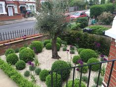 Leading garden design and landscaping company based in Fulham. Turning visions of outdoor living into reality. Front Garden Path, Front Courtyard, Garden Paths, Back Gardens, Small Gardens, Hedge Trees, Box Hedging, Planting Plan, Fire Pit Designs
