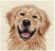GOLDEN-RETRIEVER-dog-Complete-counted-cross-stitch-kit                                                                                                                                                                                 More