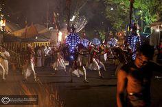 dancers, drummers, elephants @ the Kandy Esala perahera