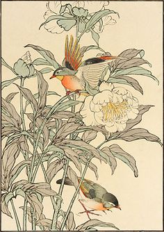 Seeing the scrolls of the Colorful Realm of Living Beings last month reminded me of a group of bird-and-flower prints I really love.   The ...