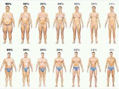 Muscle is 18% denser than Fat. This image represents people that weigh the same with different body fat percentages.