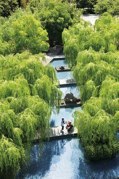 Cicada Landscape Book 098.jpg #landscapearchitecturewater