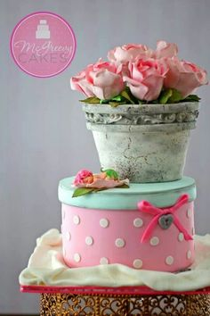 Gift box and flower pot cake