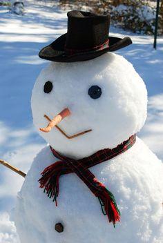 ✴Buon Natale e Felice Anno Nuovo✴Merry Christmas and Happy New Year✴ I Love Snow, I Love Winter, Winter Fun, Winter Snow, Winter Time, Frosty The Snowmen, Cute Snowman, Christmas Snowman, Winter Christmas