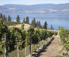 The Okanagan Valley is one of five viticultural areas in the Canadian province of British Columbia.