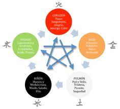 Entre el cielo y la tierra: los cinco elementos en la medicina china. Instituto Meridians