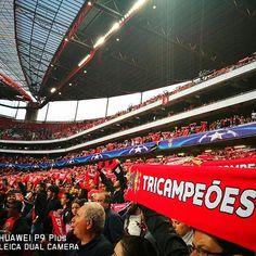 Intervalo no Estádio da Luz! SL Benfica 1-0 Besiktas. Golo de Franco Cervi!!! 💪🏻💪🏻#SLBBJK #UCL