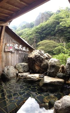 """A blog from an American naturalist's perspective about travel and life in Japan."""