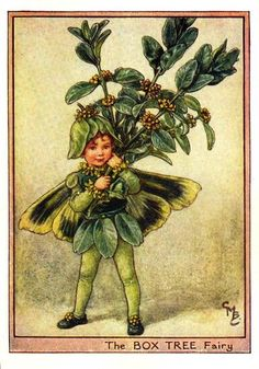 Box Tree Fairy Print or any of the original vintage Cicely Mary Barker