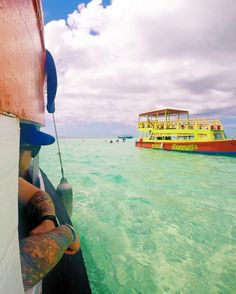 Checking out the neighbours, Nylon Pool, Trinidad and Tobago.