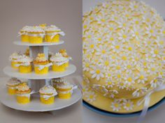 Yellow and white daisy themed birthday cake and cupcakes
