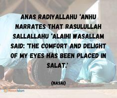 Comfort in salah!