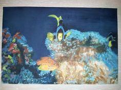 Los vecinos del coral