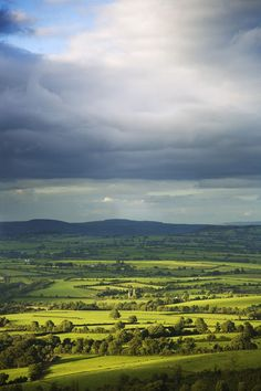 Pastoral Fields, County Waterford, Ireland