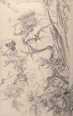 Author: Emile Galle Drawings, Black chalk and charcoal, 50x32 cm Origin: France, 1893 Album: Album ''The Gold Book of Lorraine'' Source of entry: Winter Palace, 1920s