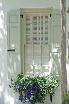 window box and shutters