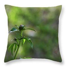 https://fineartamerica.com/featured/spring-has-sprung-robert-brown.html?product=throw-pillow