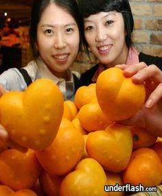 laranja coracao 01 Frutas e legumes em formatos inusitados