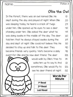 Reading Fluency Activities, First Grade Reading Comprehension, Reading Assessment, Reading Tutoring, Reading Comprehension Worksheets, Reading Intervention, Reading Passages, Kindergarten Reading, Reading Skills