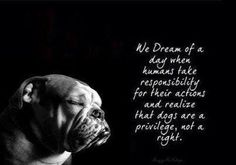 We dream of a day when humans take responsibility for their actions and realize that dogs are a privilege, not a right.