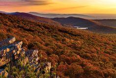 Golden hour in Autumn | by Paul Sirajuddin