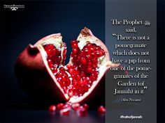 Fruit of islam Allah Quotes, Muslim Quotes, Islamic Quotes, Allah Islam, Islam Quran, Saw Quotes, Hadith Of The Day, All About Islam