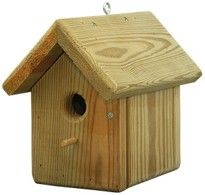 Amish Wood Finch House