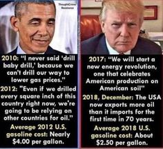 OBAMA Doesn't Care about what made and makes America truly a great nation. Trump Is My President, Vote Trump, Pro Trump, Political Quotes, Political Views, Truth Hurts, It Hurts, I Love America, Conservative Politics