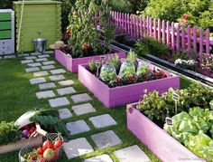 OMG, would LOVE a collection of colorful garden beds like this! (Catalina)