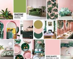 Tropical Vibes: Pink and Green Colour Crush! Pink Green Bedrooms, Tropical Bedrooms, Bedroom Orange, Gold Bedroom, Pink Room, Green Rooms, Bedroom Color Schemes, Bedroom Colors, Living Room Green