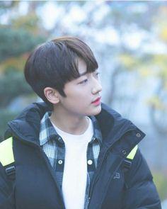 Park Sungwon Baby Bunnies, Bunny, Bare Bears, Cute Babies, Rap, Wonderland, Singing, Idol, Random