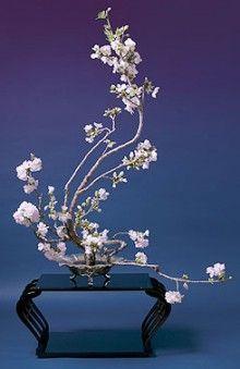 Flower Arrangement Ideas 150: H Bloom Thanksgiving Flower Arrangement