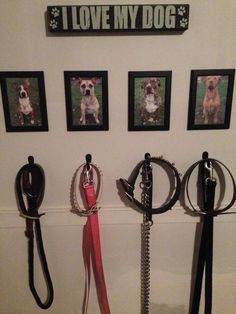 dog accessory station - Google Search