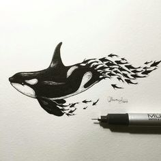 Whale sketch. This drawing reminds me of how depletion of fish stocks leads to the devastation of orca populations.