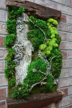 Moosbilder selber machen: Moosbild mit Holzrahmen Best Picture For beaded Garden Art For Your Taste You are looking for something, and it is going to tell you exactly what you are looking for, and you Garden Types, Diy Garden, Garden Art, Garden Walls, Herbs Garden, Dream Garden, Garden Wall Designs, Vertical Garden Design, Indoor Vertical Gardens