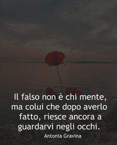 Il falso non è chi mente, ma colui che dopo averlo fatto, riesce ancora a guardarvi negli occhi. -Antonia Gravina