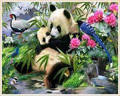 Résultats de recherche d'images pour «photos de panda en chine»
