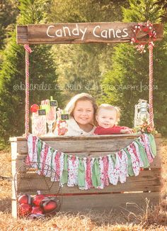 Candy Cane Stand Mini Session Photo By Brandee Oswald Photography
