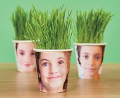 Crafts: Coffee-Cup Planters