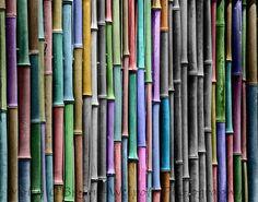 Black and White fine art print bamboo with selective rainbow coloring grape purple, blue, nursery art. via Etsy.