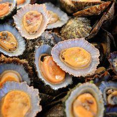 The obvious choice at a restaurant in Madeira are the fresh Lapa-clams. Parhailta ne tietenkin maistuvat paikassa jossa on merinäköala. #madeira #portugali #portugal #travel #traveling #instatravel #loma #vacation #yellow #foodpic #food #travelblogger #matkablogi #good #photooftheday #yum #instafood #trip #holiday #ruoka #blogi #instago #instagood #restaurant #keltainen
