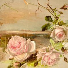 Tattoo Inspiration - Roses