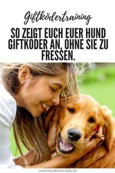 #Hund #Hundeblogger #Hundeliebe #Wissen #Giftköder Hunde || Erziehung || DIY || Wissen || Gesundheit