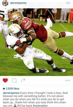 0c6a2262 84 Best Florida State Seminoles images in 2019   Florida state ...