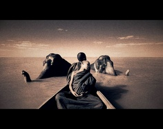 animals nature photography - gregory colbert ashes and snow - chicquero canoon elephant Museum Photography, White Photography, Animal Photography, Creative Photography, Nature Photography, Travel Photography, Theo Theo, Elephant Love, Elephant Art