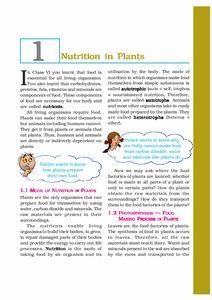 Download NCERT/CBSE Book: Class 7: Science: Science Science Textbook, Science Books, Journal